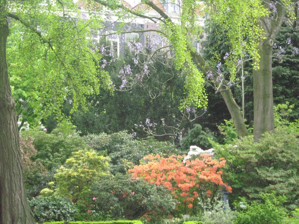 Menschen, Blog Elisabeth Reinhard: Übergewicht, Untergewicht, seelische Sicht, Im Garten der Träume